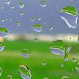 Jeanne_trulaske_green_grass